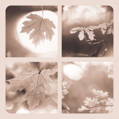 Obraz Jesień kolażu