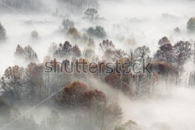 Obraz Jesień krajobraz, Włochy