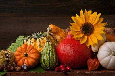 Obraz Jesień Martwa natura z dyni