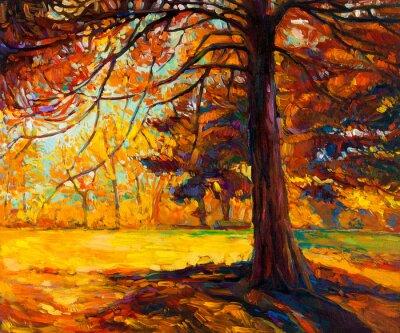 Obraz Jesienne drzewa