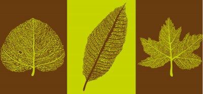Obraz Jesienne liście