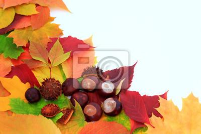 Obraz Jesienne liście i kasztany