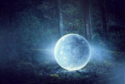 Obraz Jest księżyc w pełni. Różne środki przekazu