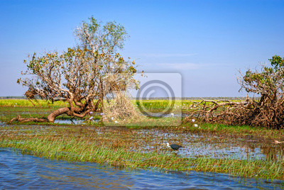 Kakadu National Park (Terytorium Północne, Australia)