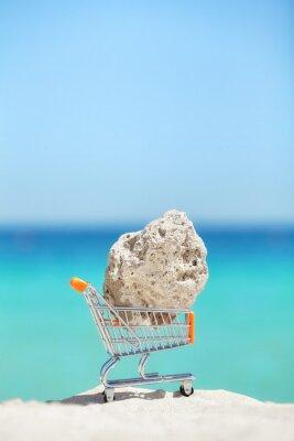 Kawałek korala w koszyku miniaturowym na plaży, zagrożonej przemytem gatunków i koncepcji degradacji środowiska.