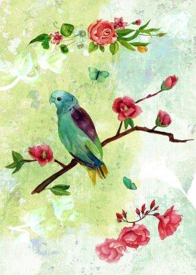 Obraz Kolaż archiwalne pocztówka z ptaków, motyli i kwiatów