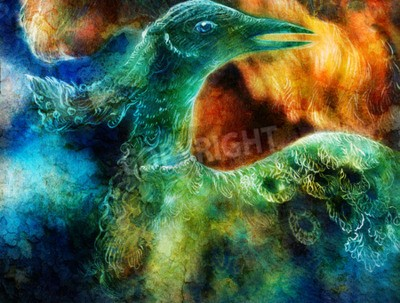Obraz kolaż phoenix ptaka