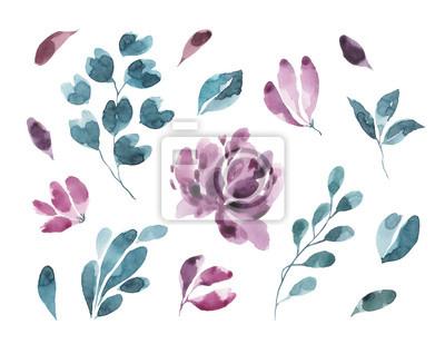 Kolekcja kwiatów.