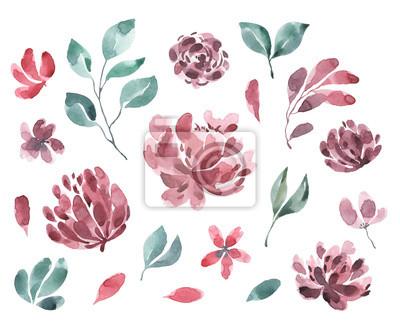 Kolekcja kwiatów. Akwarela kwiaty, kwiaty i liście. Ustaw 3