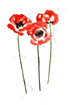 Obraz Kolekcja maku akwarela kwiaty