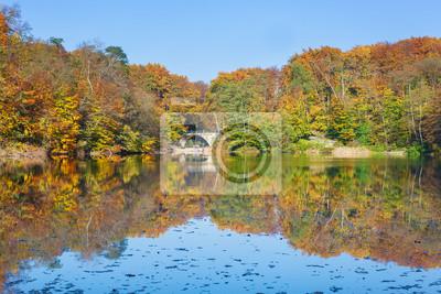 Kolorowa jesień krajobraz z odbicia w jeziorze.
