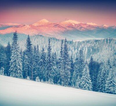 Obraz Kolorowa zima wschód słońca w mglisty gór.