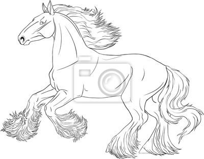Obraz Kolorowanka Z Prowadzeniem Konia Shire Na Wymiar Malowac