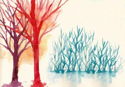 Obraz kolorowe drzewa w zimie kolor tła wody