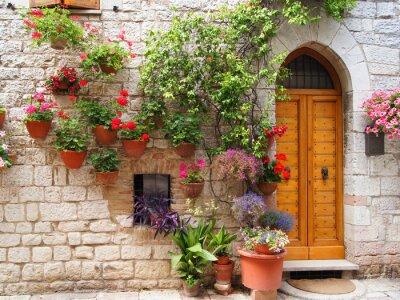 Obraz Kolorowe kwiaty na zewnątrz domu w Asyż, Włochy