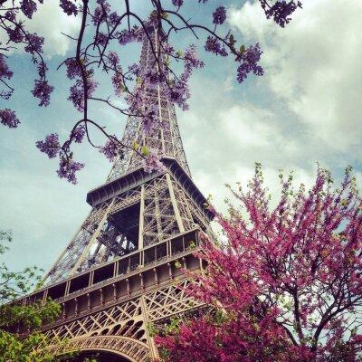 Obraz Kolorowe kwiaty wokół Tour Eiffel na wiosnę