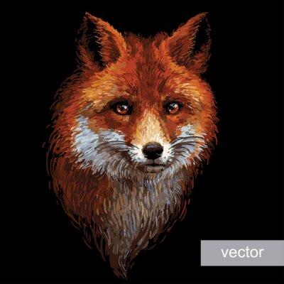 Obraz Kolorowych ilustracji lisa na białym tle