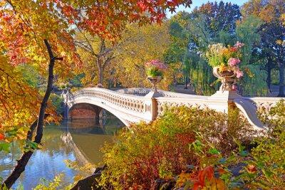 Obraz Kolory jesieni - spadek liści w Central Park, Manhattan, Nowy Jork