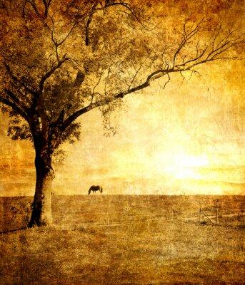 Koń na zachodzie słońca - stonowanych obraz w stylu retro