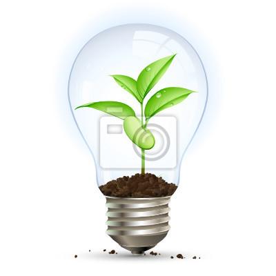 Koncepcja czysty i ekonomiczny energii