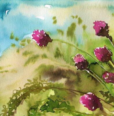 Obraz koniczyna, różowe,