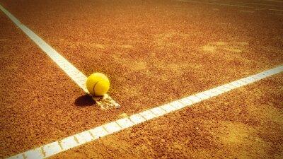Obraz kort tenisowy 338)