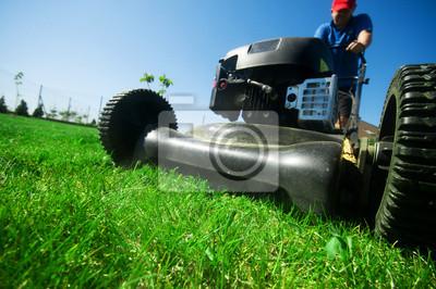 Koszenia trawy