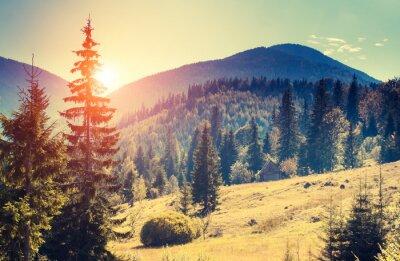 Obraz krajobraz górski