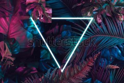 Obraz Kreatywny układ fluorescencyjny wykonany z tropikalnych liści. Płaskie świeciły neonowe kolory. Koncepcja natury.