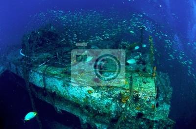 Król Cruiser Wreck