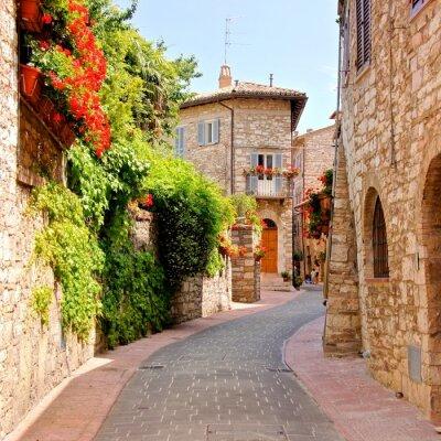 Obraz Kwiat ulicy w mieście Asyż, Włochy