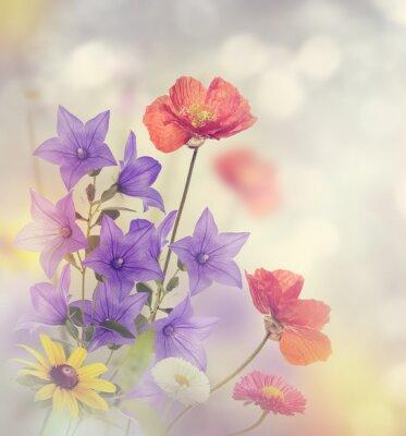 Obraz Kwiaty Blossom