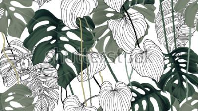 Obraz Kwiecisty bezszwowy wzór, zieleń, czarny i biały rozszczepiająca liść roślina Philodendron z winogradami na białym tle, pastelowy rocznika temat