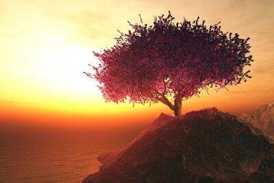 Obraz Kwitnąca Wiśnia Drzewo samotny w skałach na brzegu endle