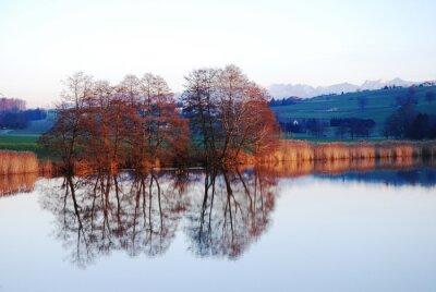 Obraz Lac en miroir