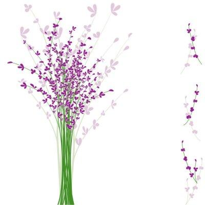 Obraz lato fioletowy kwiat lawendy
