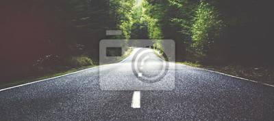 Obraz Lato Kraj drogowego z drzew Obok Concept