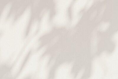 Obraz Leaf shadows on a cement background illustration