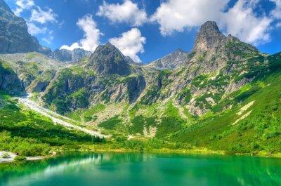 Obraz Letni krajobraz.