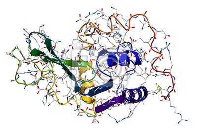 Lizozym, naturalny enzym przeciwbakteryjny
