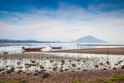 Łodzie rybackie na plaży Tajlandii