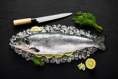 Obraz Łosoś ryby, składniki na lodzie na czarnym tabeli górnej vi kamienia
