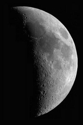 Obraz Lune