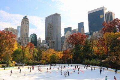 Obraz Łyżwiarstwo w Central Park w Nowym Jorku