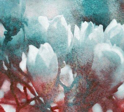 Obraz Magnolien textur retro