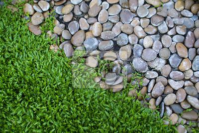 Obraz Małe kamienie i świeże zielona trawa w ogrodzie