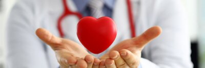 Obraz Male medicine doctor hands holding and covering red toy heart