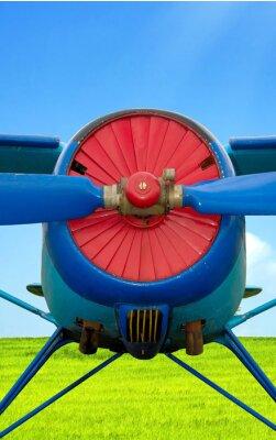 Obraz Mały samolot niebieskie pod niebo