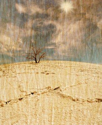 Obraz Martwe drzewa na pustyni soli w stylu retro