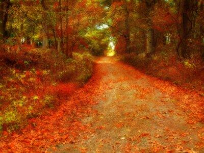 Obraz marzycielski jesień
